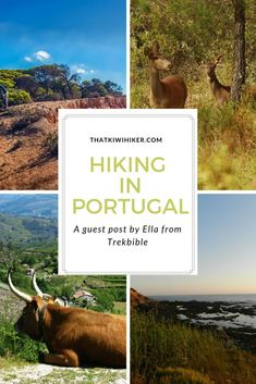 Hiking in Portugal | A Guest Post by Ella from Trekbible - That Kiwi Hiker