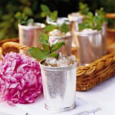 You don't have to make the trip to Churchill Downs or even Louisville to experience the Kentucky Derby. Plan your own Kentucky Derby party with these suggestions for Derby food, cocktails, like the ClassicMint Julep, games, and decorations. Kentucky Derby, Louisville Kentucky, Paducah Kentucky, Derby Time, Derby Day, Bourbon Cocktails, Classic Cocktails, Cocktail Recipes, Drink Recipes