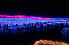 Espectáculo de millones de luces LED transforman un jardín botánico japonés en un paraíso invernal