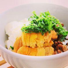 うに 男前豆腐と納豆の発芽玄米丼