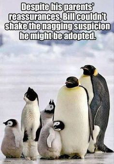 Despite His Parents' Reassurances Bill Couldn't Shake The Nagging Suspicion He Might Be Adopted