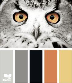 Color: Wise Tones by Design Seeds - light grey, dark grey, black, terra cotta, mustard.
