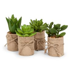 Set of 4 artificial succulents wrapped in burlap. Add these stylish items to your everyday decor or arrange them as part of your tablescape. assorted artificial mini succulents H set of 4