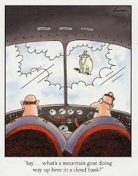 """what's a mountain goat doing way up here in a cloud bank?"""" (Gary Larson, The Far Side) Far Side Cartoons, Far Side Comics, Funny Cartoons, Funny Comics, Political Cartoons, Gary Larson Cartoons, Gary Larson Comics, You Funny, Haha Funny"""