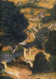 Deer. (detail) Shah Jahan Hunting. The Padshahnama. Mughal, India ca. 1645