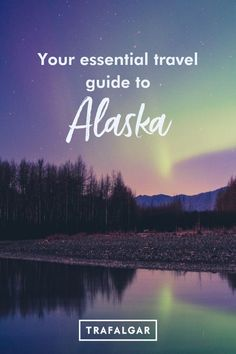 Looking for the best things to do in Alaska? A rise in domestic travel and domestic trips means a lot of travellers are looking closer to home. Whether you're interested in seeing the national parks and cultural landmarks, or seeing the Northern Lights, watching dog-sled races, stay in a log cabin, or take an Alaska road trip. When to visit Alaska.  #trafalgartravel #visitalaska #travelalaska Alaska Cruise Tips, Alaska Travel, Travel Usa, Canada Travel, Travel Tips, Domestic Trips, Visit Alaska, Us Travel Destinations, See The Northern Lights