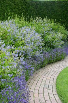 Beautiful perennial bordered brick walkway - LOVE! flowers falling over path, perfect
