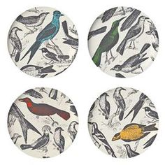 """Four melamine dinner plates with academic-style bird motifs.    Product: 4-Piece dinner plate set  Construction Material:   Melamine  Color: MultiFeatures: Designed by Thomas Paul    Dimensions:   11"""" Diameter each"""