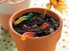 ... Emma's 2nd birthday | Pinterest | Dirt Cake, Cakes and Flower Pots