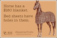Equestrian Truths. Buys $250 blanket, sheets have holes