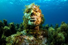 """In in the waters surrounding Cancun, Isla Mujeres and Punta Nizuk appeared majestic underwater museum """"MUSE"""". Cozumel, Cancun Mexico, Underwater Ruins, Underwater Sculpture, Beautiful World, Beautiful Places, Pranayama, Underwater Photography, Mexico Travel"""
