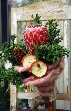 http://holmsundsblommor.blogspot.se/2010/12/ullig-protea.html Protea, ull