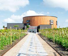 Besök vårt toppmoderna vineri och showroom med vinbar och restaurang i Simrishamn. Här kan du njuta av vin och mat i kombination samt lära dig hur man framställer vin – från druva till färdig produkt.
