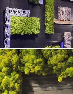 Moss tiles for interior walls.  I love vertical gardens!