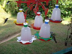 bebederos para colibri - Buscar con Google