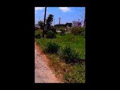 EAST LaPENITENCE MARKET - GUYANA 2015