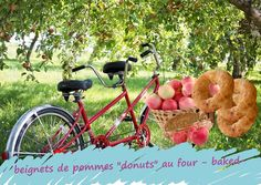 Subtiles anneaux d'or renfermant la pomme de toutes les envies, ils constituent un bon goûter, dessert au fruit pour les enfants. Tu vas cuisiner ceux-ci sans friture, les cuire au four ou à l'appareil à donuts. C'est une recette tellement simple que tu vas la préparer avec les enfants et ainsi leur apprendre à faire une pâte, à éplucher et évider une pomme dès 6 ans. Dessert Aux Fruits, Nutrition, Baking, Ceux Ci, Ainsi, Or, Simple, Oven Cooking, Skinny Kitchen