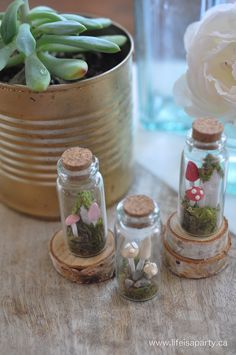 how to make a miniature fairy garden in a bottle 7.jpg
