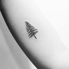 #소나무타투 #나무타투    #treetatoo #tatoo