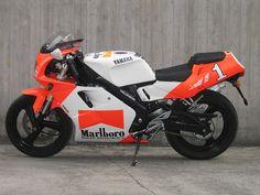 Yamaha TZR 125 (orange & white)