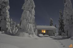 Moonlight and a warm wilderness hut, that's all you need for a winternight in Lapland