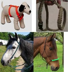 Make a harness for your dog.  Halters and bridles can be made for your horses, using paracord.