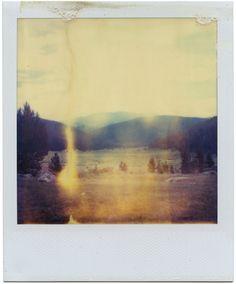 Expired Polaroid SX70