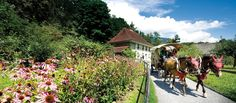 Welcome | Swiss open-air museum Ballenberg Bergen, Alps, Switzerland, Places To Go, Museum, Gallery, Pictures, Travel, Train