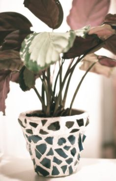 Mrs. Frugal Franny / Mosaic Flower Pots Tutorial!