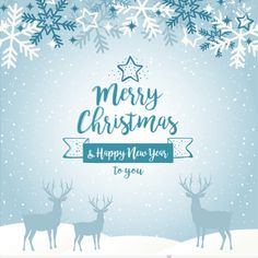 Christmas Profile Picture Filter Overlay For Facebook Merry Christmas Images, Merry Christmas Wishes, Merry Christmas And Happy New Year, Christmas Quotes, Christmas Fun, Christmas Jesus, Merry Xmas, Happy Holidays, Christmas Wreaths