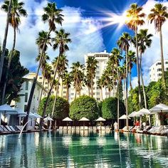 Delano Hotel | Luxury Hotel Miami Beach | Boutique Hotel