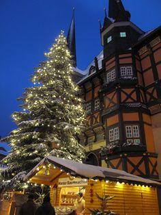 Trend Gro er Weihnachtsbaum vor dem Rathaus Wernigerode