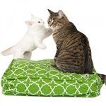 molly mutt Title Track Square Petite Dog Duvet Small Green ** For more information, visit image link. (Note:Amazon affiliate link) #DogBeds