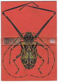 Book Art, Insects, Rose Sanderson