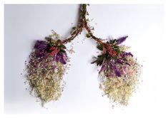 Lungs ++ eyeheartspleen / camila carlow