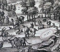 Epiphanius Physiologus: Pieter van der Borcht