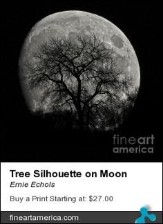 Tree Silhouette on Moon