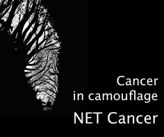 Cancer in Camouflage.  The symptoms of ‪#‎NETcancer‬ can often be mistaken for those of more harmless ailments. Research has shown that ‪#‎NETpatients‬ live with unexplained medical symptoms for an average of 5 years. http://www.eurordis.org/content/net-cancer-camouflage