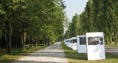 Settembre 2013 Parco Nord Milano ospiterà la 7° edizione del Festival della Biodiversità, appuntamento annuale che propone oltre 100 eventi sulla natura e sulla sostenibilità presso la Cascina Centro Parco e altri luoghi del Nord Milano.
