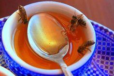 8 beneficios de la miel de abeja