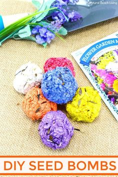How to Make Seed Bombs, Seed Bombs Recipe, Flower Seed Bombs, Seed bombs are perfect to make for spring! You can use recycled paper which is great for the Earth and helping your environment. Flower Activities For Kids, Nature Activities, Spring Activities, Learning Activities, Stem Activities, Kids Learning, Teaching Ideas, Earth Day Projects, Earth Day Crafts