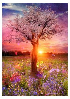 Mother Nature Tree Of Life Square Diamond Painting-Mystical, visionary and fantasy art. Discover some of the most spiritual artwork by amazing artist from around the world. All Nature, Nature Tree, True Nature, One With Nature, Amazing Nature, Amazing Art, Images D'art, Paint By Number Kits, Tree Art