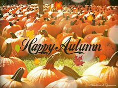 Adventures at Greenacre: Welcome Autumnween! Thanksgiving Prayers For Family, Prayer For Family, Free Fall Wallpaper, Free Thanksgiving Printables, Fall Memes, Welcome Fall, Halloween Decorations, Healthy Eating, Autumn