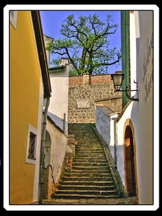 This photo from Pest, West is titled 'Stairs of Szentendre'. Budapest Christmas, I Saw, Places Ive Been, Travelling, Stairs, Europe, Pictures, Hungary, Photos