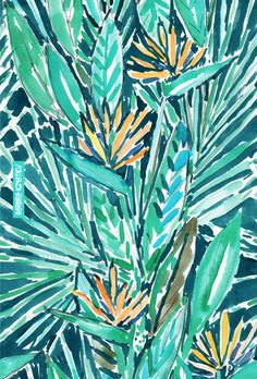 TROPICAL BIRDS OF PARADISE Barbarian Print  // Bird-of-paradise plants live all over my neighborhood in Oakland and they always make me feel so tropical and chill whenever I see them. Ahhh. // Click through to shop this print and download a phone wallpaper.