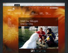 Vancouver Aquarium web