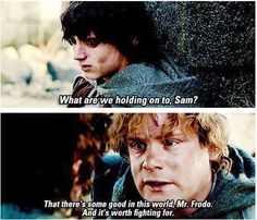 Sam and Frodo. ❤ Lord of the rings