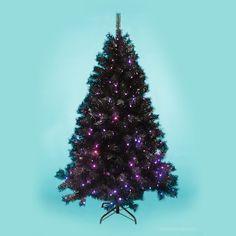 1.8m Pre-Lit Black Spruce