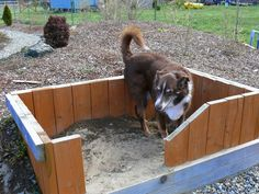 Backyard Ideas For Pets on fence ideas for pets, basement ideas for pets, swimming pools for pets, diy for pets, design ideas for pets, balcony ideas for pets, christmas ideas for pets, interior design for pets, art ideas for pets, party ideas for pets, water features for pets, gifts for pets, playroom ideas for pets, food for pets, craft ideas for pets,