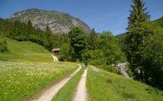 Auf dem Saalachtal-Radweg in Schneizlreuth